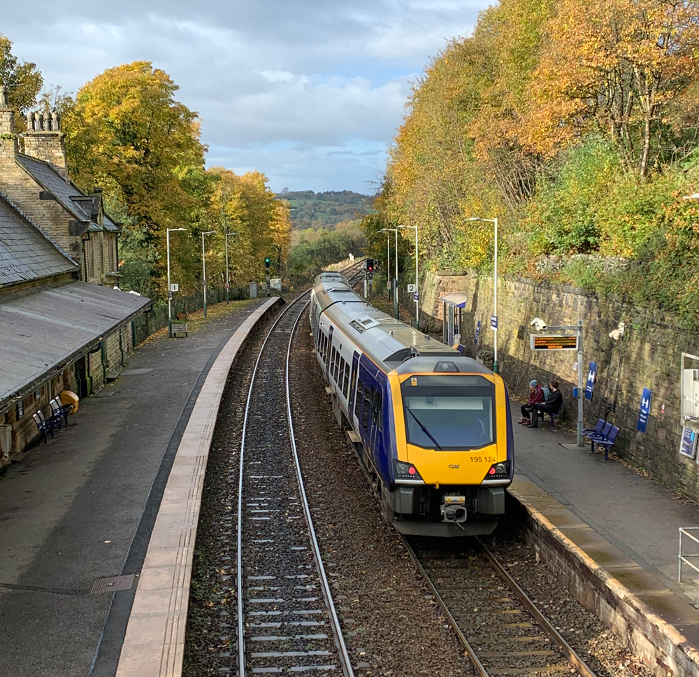 195 class train at New Mills Central